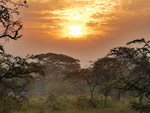 Sunrise in Lake Mburo National Park, Uganda