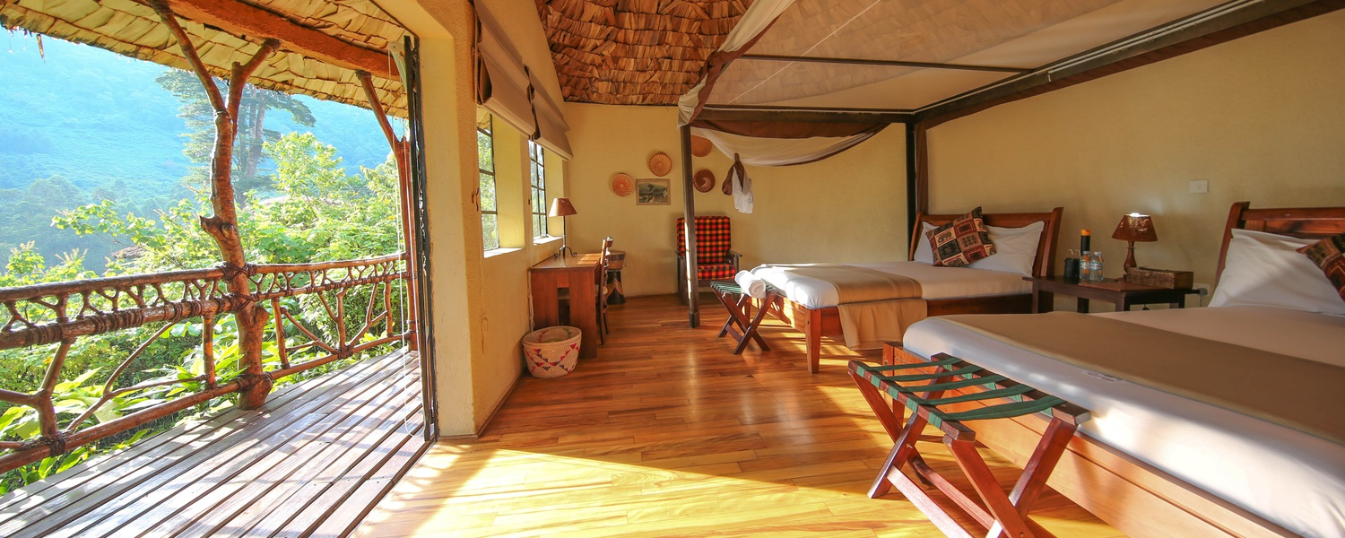 Mahogany Springs room, your base for tracking the gorillas in Bwindi Impenetrable National Park.